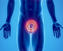 Benefici del cloruro di magnesio sull'ipertrofia prostatica benigna