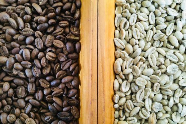 Foto di due diverse qualità di chicchi di cacao