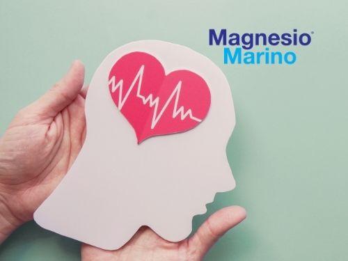 Sagoma di una testa umana di cartoncino con disegno di un cuore che pulsa a simboleggiare una perfetta circolazione sanguigna nel cervello