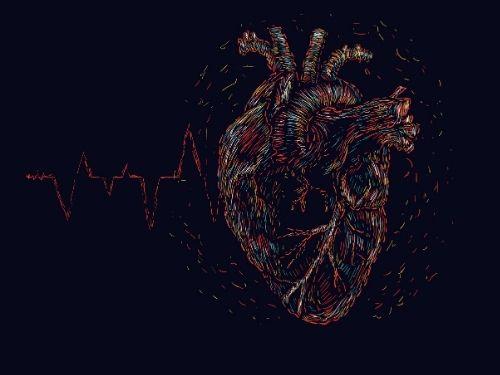 immagine in 3d di un cuore umano