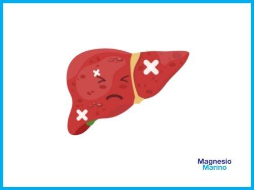 Fegato che non sta bene a causa della carenza di magnesio